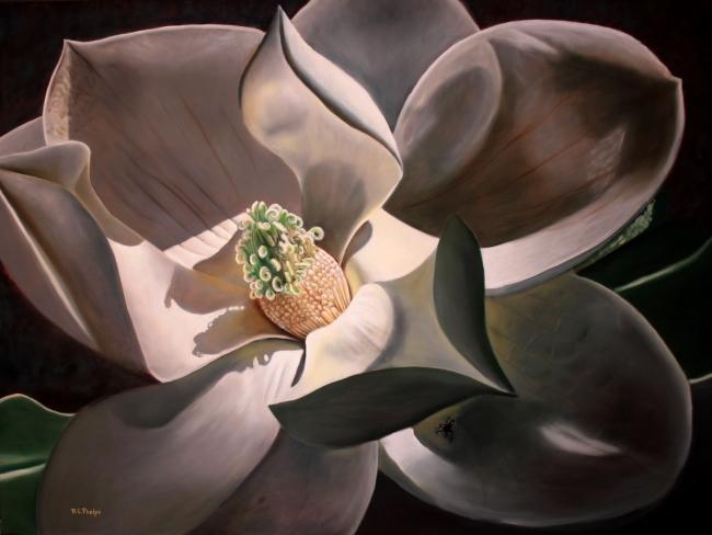 magnolia blossom painting