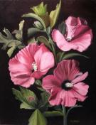rose of sharon painting