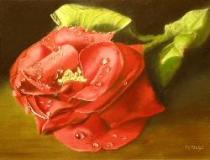 red rose blossom painting