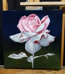 color being painted in on rose