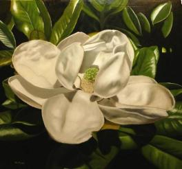 magnolia blossom, how to paint, paint magnolia