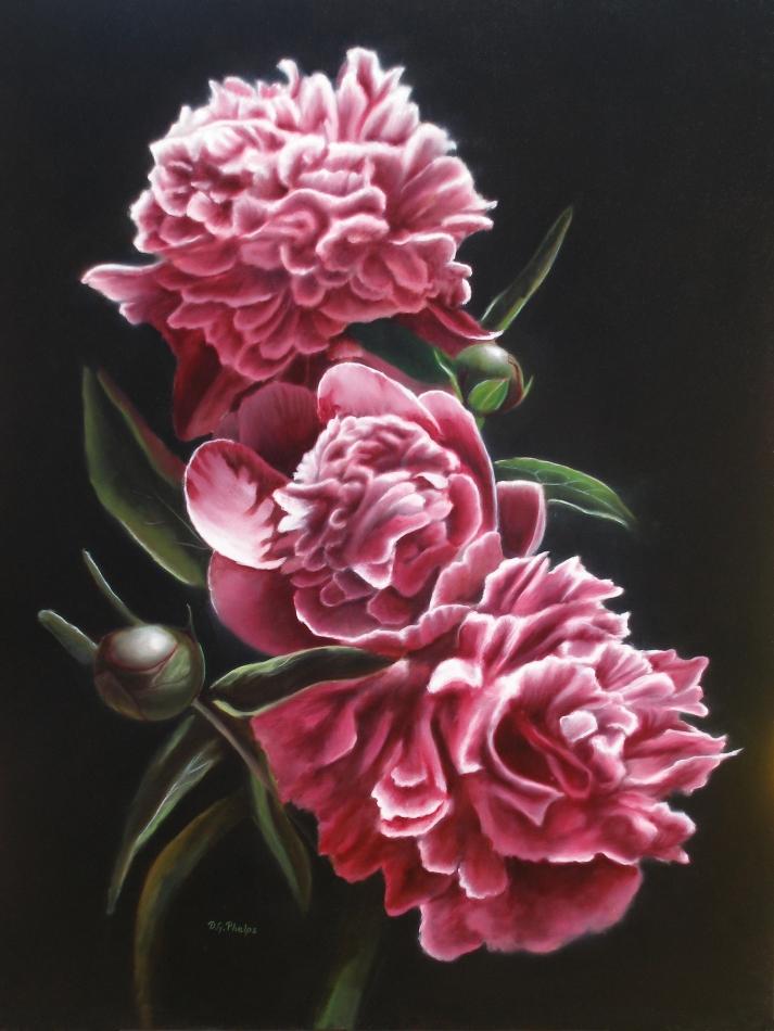 pink peonies oil painting