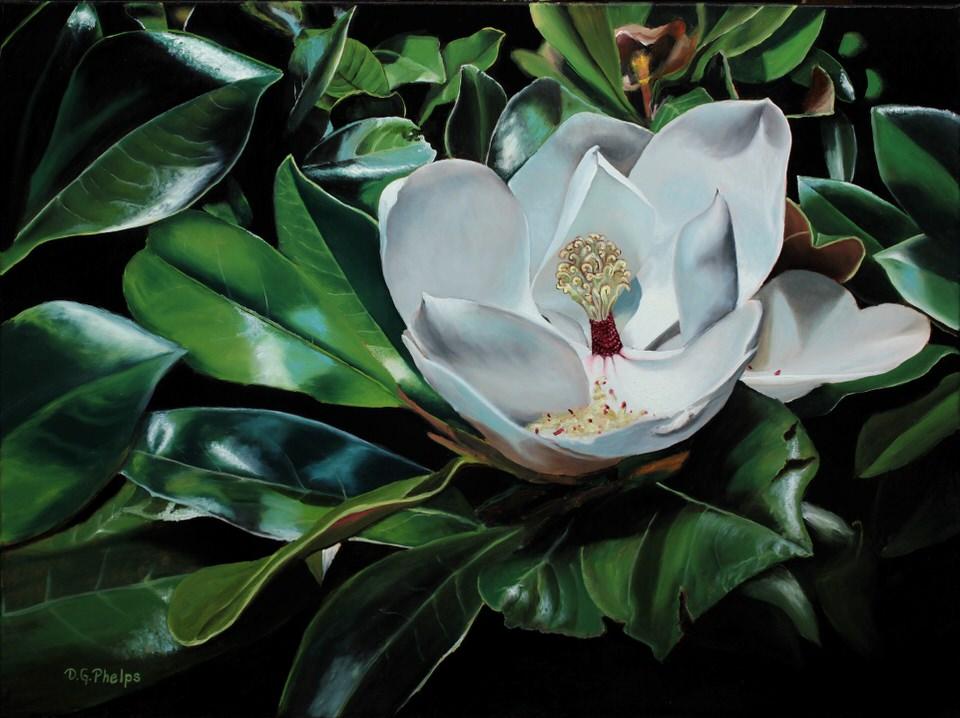 Magnolia Flower painting titled Magnolia Glory