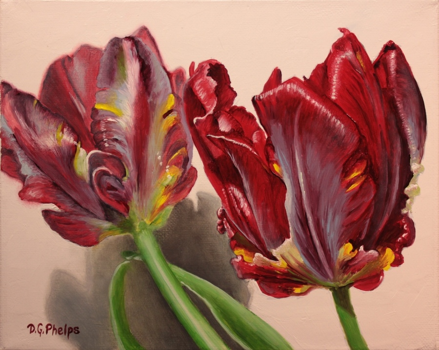 Red Parrot Tulips oil painting