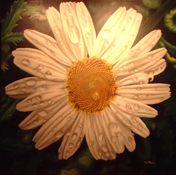 daisy oil painting