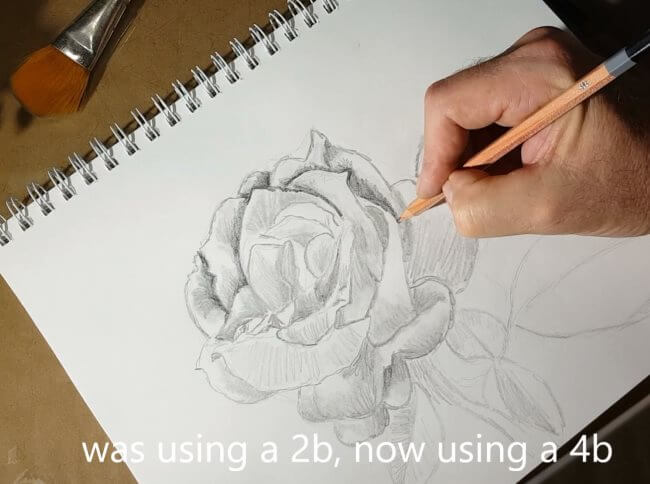 Rose Drawings Step By Step From Simple To Realistic