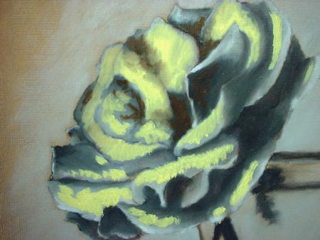 yellow and red rose painting demonstration