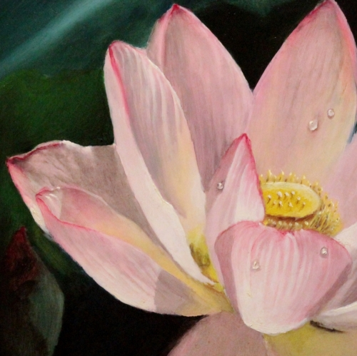 Lotus flower art a wonderful painting of this mysterious flower an original oil painting by artist delmus phelps mightylinksfo
