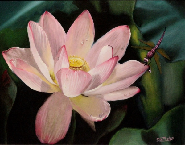 lotus flower art, water lily painting, lotus flower picture