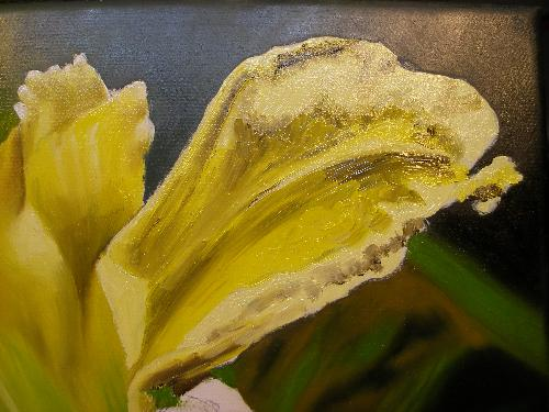 yellow lily oil painting