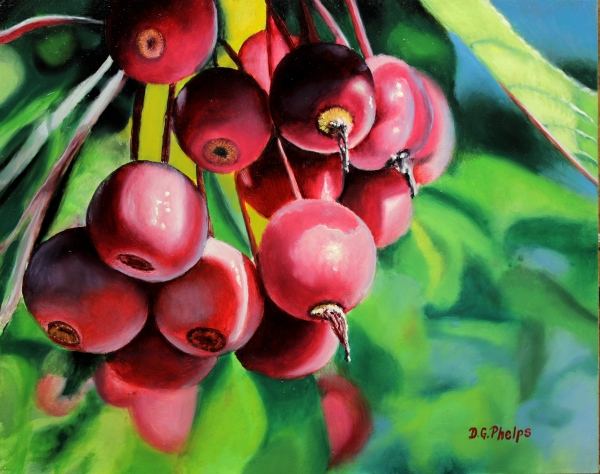 crab apples painting