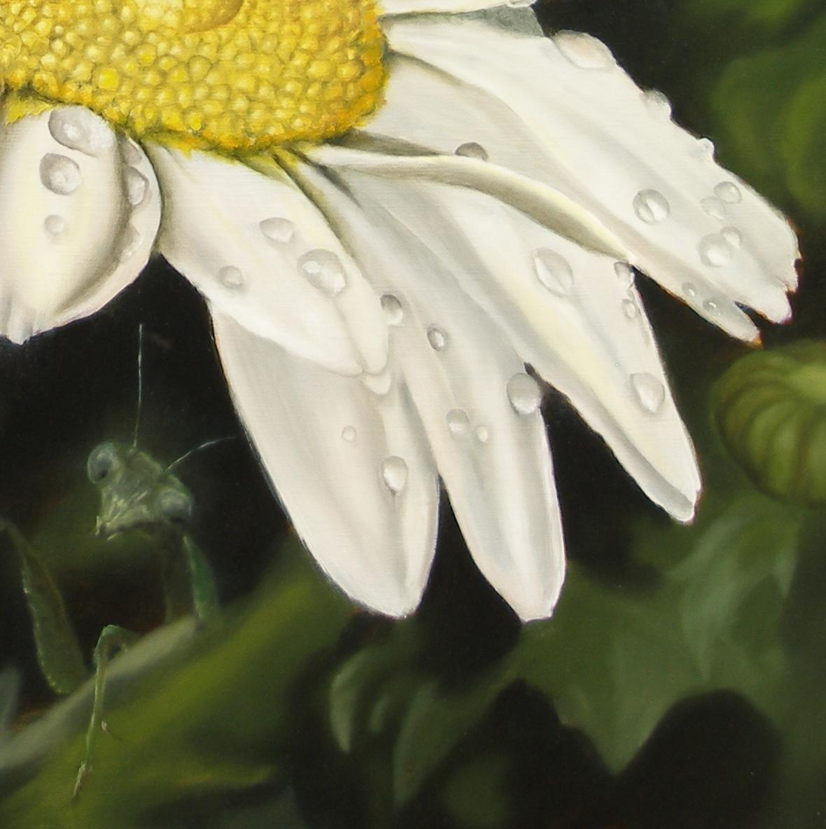 praying mantis under daisy painting
