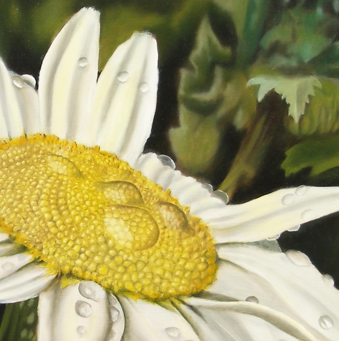 daisy with dew drops painting