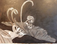 Grisaille or Gray underpainting of the flower