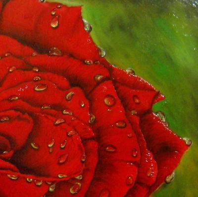 Red rose petals painting