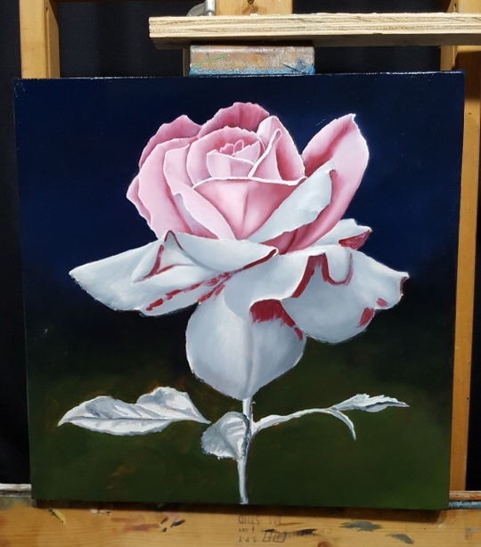 How to paint a rose flemish style for Easy way to paint a rose