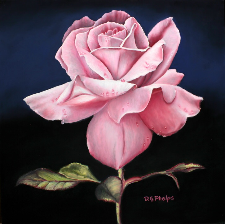 Dusty Pink Rose oil painting by Delmus Phelps