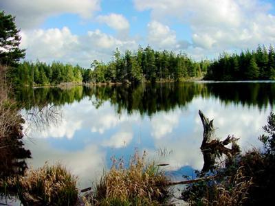 Empire Lake, mirror calm partly cloudy day
