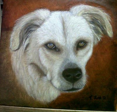 Fynn April 2012 Oil painting portrait of rescue dog