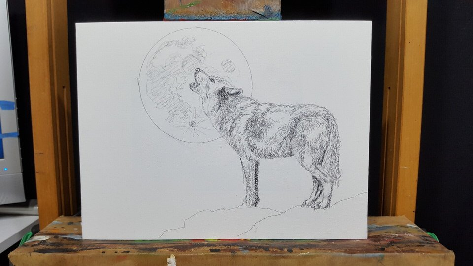 Wolf drawing my finished drawing now ready for my first layers of paint stay tuned for the completion of the painting in the next few days ccuart Gallery