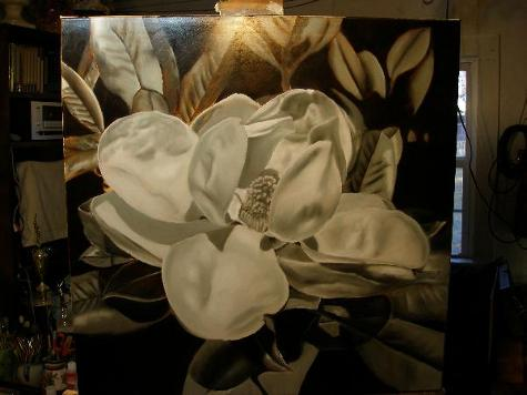 gray underpainting magnolia blossom