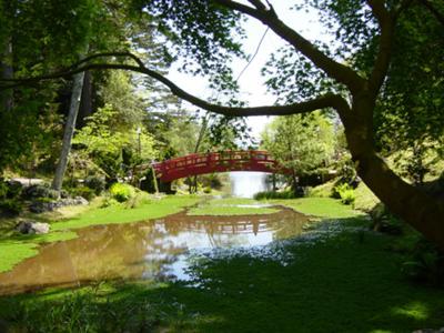 Monet style bridge and water pond