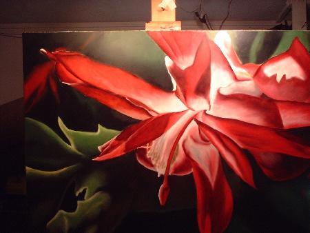 christmas cactus demonstration