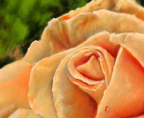 close up of rose painting