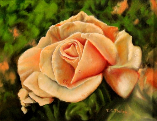 peach rose painting