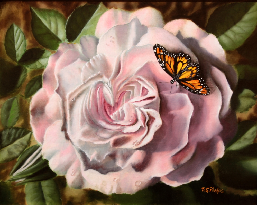 pink blossom rose monarch butterfly