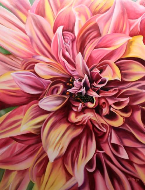 pink dahlia blossom painting