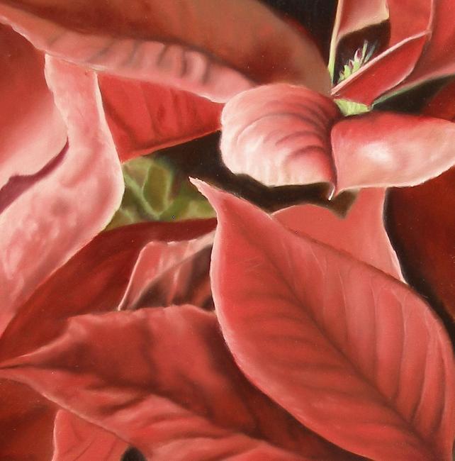 poinsettia plant painting