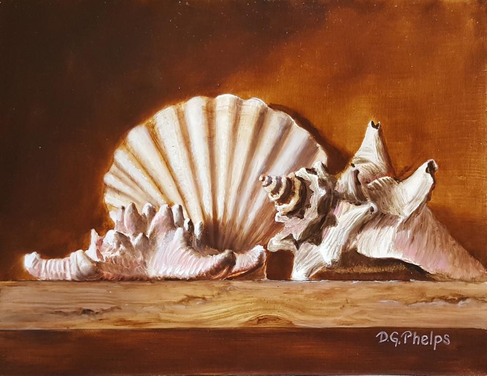 sea shells art