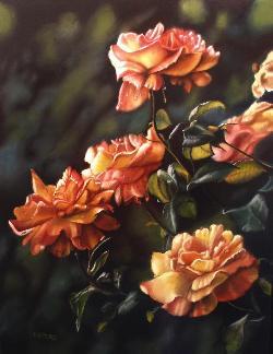 orange yellow rose bush