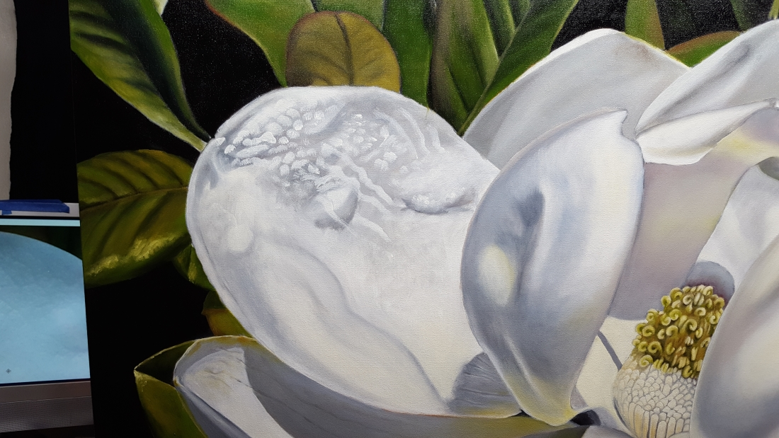 southern magnolia blossom color layers