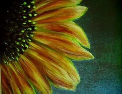 Stories from my garden, A Sunflower Portrait