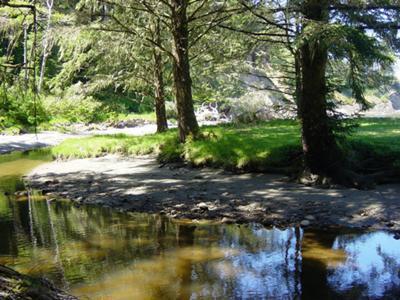 Sunset Beach State Park  Coos Bay Oregon