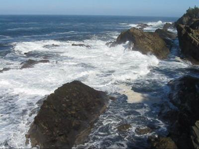 Sea in Motion, Shore Acres, Oregon Coast