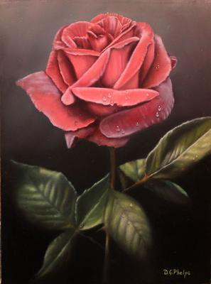 Your Rose I used for Inspiration