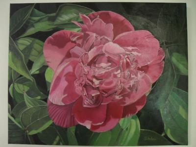 Finished color layer of peony oil painting