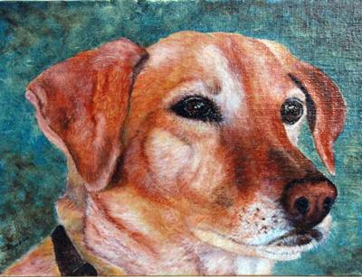 Beau, pet portrait oil painting
