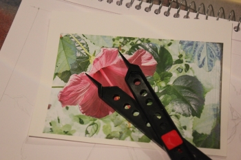 pencil flower drawing lesson