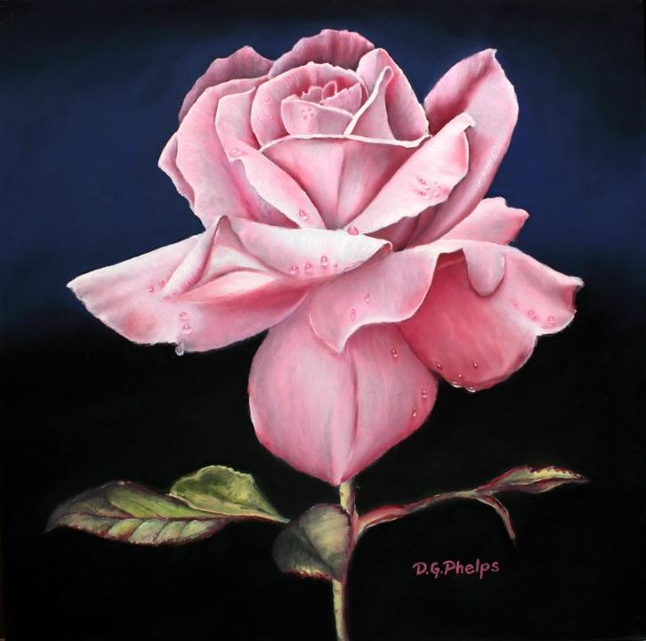 Pink Rose oil paintings