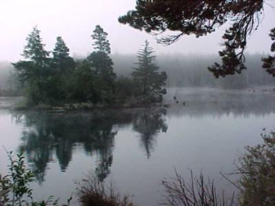 Misty Cove, Empire Lake