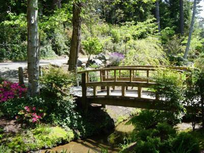 Monet style bridge