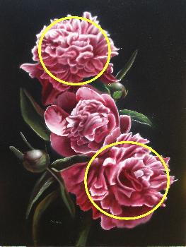 peonies painting, how to paint peonies