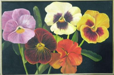 Pansies, still life flowers