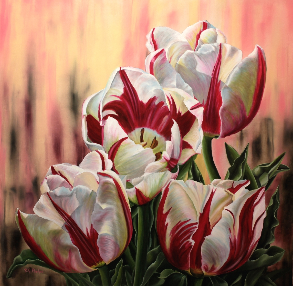 red white stripped tulips