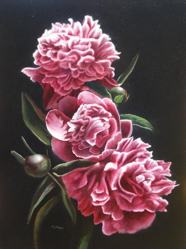 Umber under layer peonies blossom