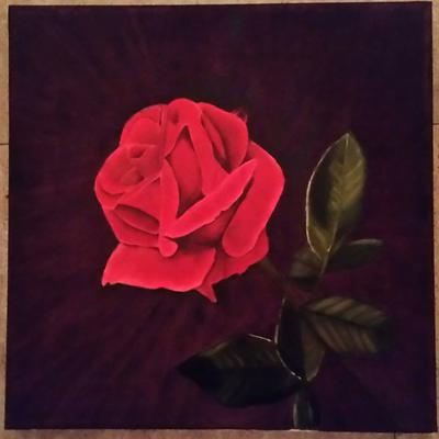 Velvet red rose for Easy way to paint a rose